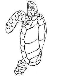 Small Picture Leatherback Sea Turtle coloring page Animals Town Free