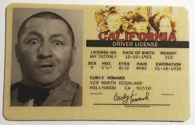 License Amp Summary Id Drivers gt; Cards - Drivekygov