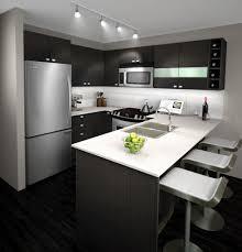 kitchen white and grey kitchen designs wooden drawer island zebra pattern rug colorful fl tile