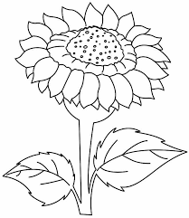 Free Sunflower Color Sheets Download Free Clip Art Free Clip Art