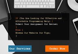 expert programming assignment help
