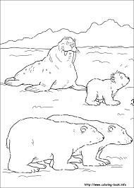 Small Picture polar bear on ice coloring page free printable coloring pages