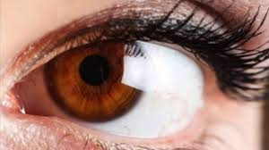 Dark Brown To Light Brown Eyes Brown Eye Color And Its Best Things To Know