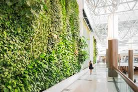 Press Releases : Verical Garden, Living Wall or Green Wall, Residential
