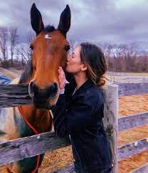 Cute horses ...