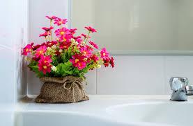 Pflanzen Fürs Bad Verwandeln Es In Eine Grüne Oase Fresh Ideen Für