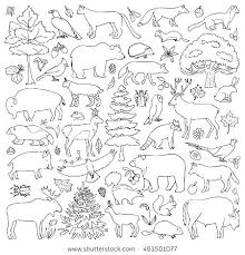 Coloring Pages Forest Animals Forest Coloring Pages Forest Coloring Pages Forest Coloring Pages B