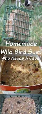feed your fine feathered friends with an easy to make homemade wild bird suet easy