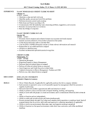 Credit Clerk Resume Samples Velvet Jobs