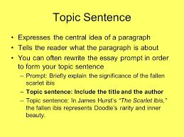 answering short essay questions on exams ppt 10 topic