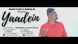 yaadein shahzeb ali teaser you