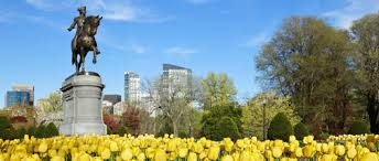 Image result for boston summer