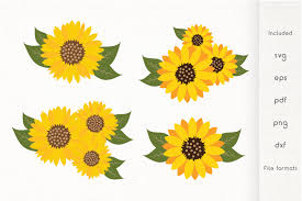 Free leaf icons in wide variety of styles like line, solid, flat, colored outline, hand drawn and many more such styles. Sunflowers Svg Sunflower With Leaves Vector 693476 Illustrations Design Bundles