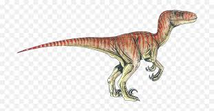 Listing 10,000+ pictures of dinosaurs, facts about them and other prehistoric animals, bringing them closer to kids, their parents and teachers. Download Velociraptor Tyrannosaurus Deinonychus Dinosaur Png Raptors Dinosaurs Free Transparent Png Images Pngaaa Com