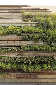 living wall systems toronto. zentro office building and commercial - la molina district, peru 2012 gonzalez moix arquitectura -- nice way to soften the wall. living wall systems toronto