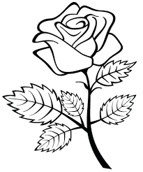 Small Picture Coloring Pages Roses Rose 5402 Picture 156 With Of lyssme