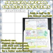 Ecosystem Anchor Chart Worksheets Teaching Resources Tpt