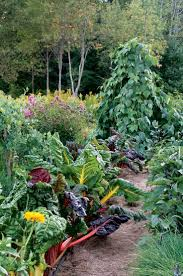 370 Best My French Potager Images On Pinterest Gardening