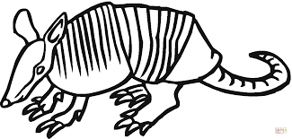 Small Picture Armadillo 17 coloring page Free Printable Coloring Pages
