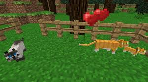 tame baby ocelot minecraft. Brilliant Tame My First Tamed Ocelots By CharmandersFlame  With Tame Baby Ocelot Minecraft O