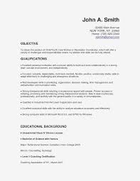 Hr Professional Resume Sample Human Resources Manager Resume