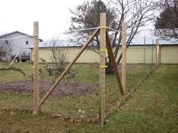 deer proof garden fence. 6 X 100 Standard Deer Fence Garden Proof Inside Height Prepare 15