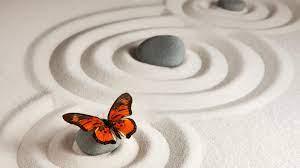 Monarch Butterfly Sand Stone 4K 5K ...