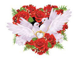 Pair White Pigeons Golden Jewelry Heart ...
