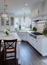 gallery of interesting kitchen sink chicago