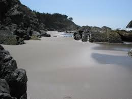 Image result for northern california coastline