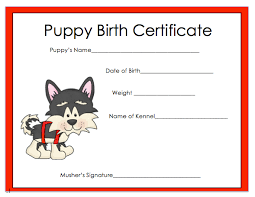 dog birth certificates how does your puppy grow 2018 iditarod teacher on the trail