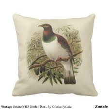 Small Picture Vintage Science NZ Birds Kereru Square Cushion Part of the