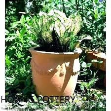 outdoor flower pots ideas planter pots ideas pot plant garden exclusive design incredible outdoor flower vegetable
