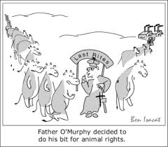 animal rights introduction farther o murphy does his bit for animal rights