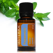 Image result for doterra peppermint