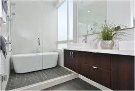 awesome brilliant impressive modern bathtub shower bathroom tub and shower overwhelming principles bathroom tub and shower