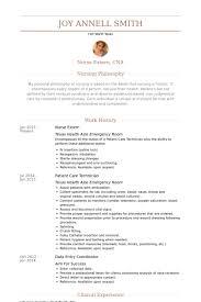 Nurse Extern Resume samples