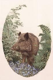 Les 136 Meilleures Images Du Tableau Art Animalier Sanglier