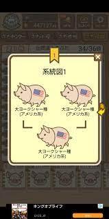 養豚ミックス 図鑑