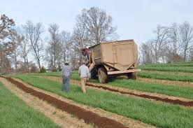 blueberry soil mix. Beautiful Mix Soil Preparation For Blueberry Farm Plant Installation Throughout Mix U