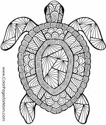 Animal Coloring Page 72 Arts N Crafts Turtle Coloring Pages