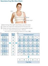 14 Best Bra Size Chart Images Bra Size Charts Bra Sizes Bra