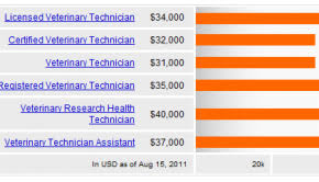 Veterinarian Technician Salary Where Do The Highest Paid Vet Techs Work Become A Vet Tech