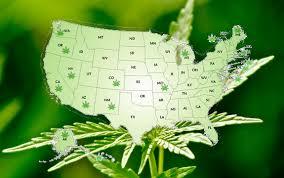 should medical marijuana be legalized essay should medical marijuana be legalized essay i believe medical marijuana should be legalized for
