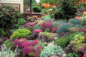 a pretty rock garden idea with colorful