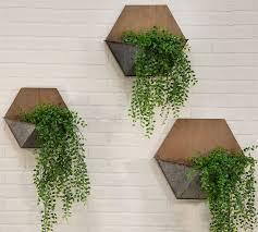 naomi pine wood wall mounted planters