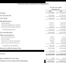 Income Statement Year End 2018 Liqtech Liqtech