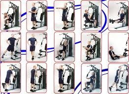 Multi Gym Wall Chart Marcy 988 Workout Routine Beste Awesome Inspiration