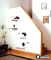 cat shelf ideas shelves off of stair wall or a regular floating uk mounted perch stuff