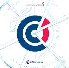The Branding Source New Logo Cci France